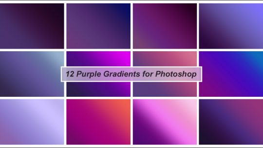 Purple Gradients