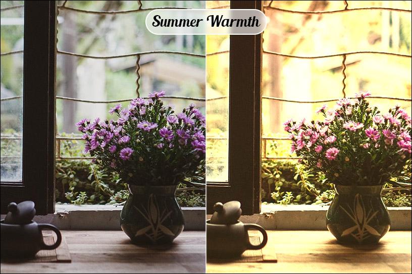 Summer Warmth